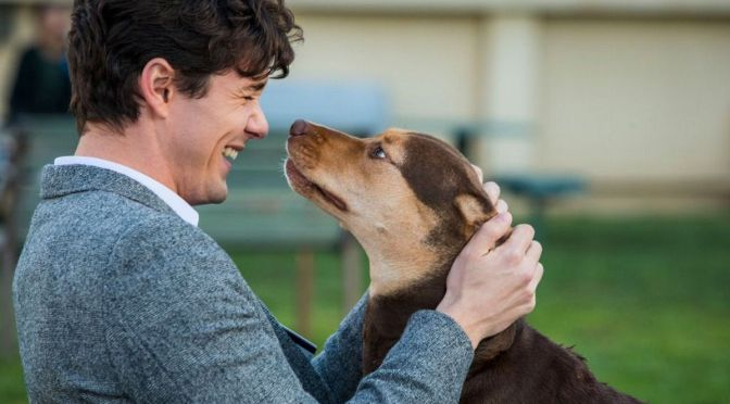 A Dog's Way Home | Review