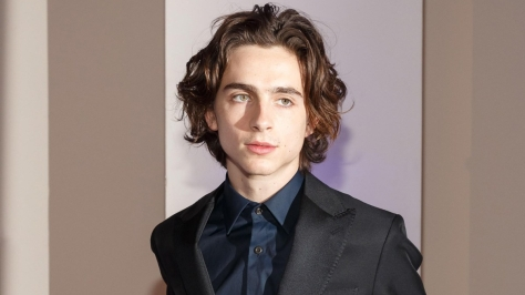 Timothee Chalamet at arrivals for Museum Of The Moving Image Salute To Annette Bening, 583 Park Avenue, New York, NY December 13, 2017. Photo By: Jason Smith/Everett Collection